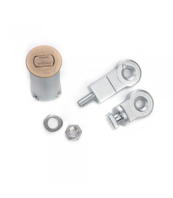 NV248 - Ground Lock Fixing Unit with Brass topped Housing and Zinc Plated Eyelets