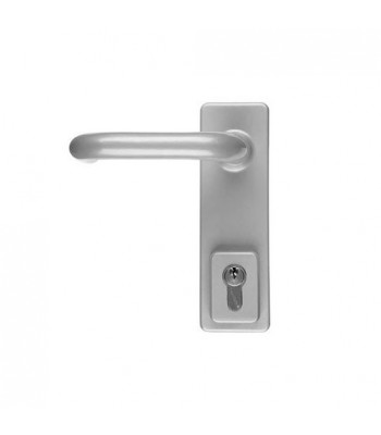 DHL010 - Briton 1413 Outside Access Divice with Euro Profile & D Handles