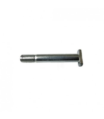 NV253 - T Bolt - M6 x 55mm